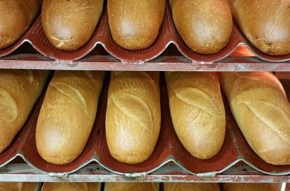 תבניות לחם